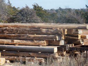 Cedar beams1