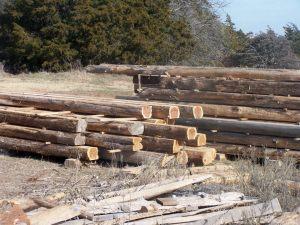 Cedar beams2